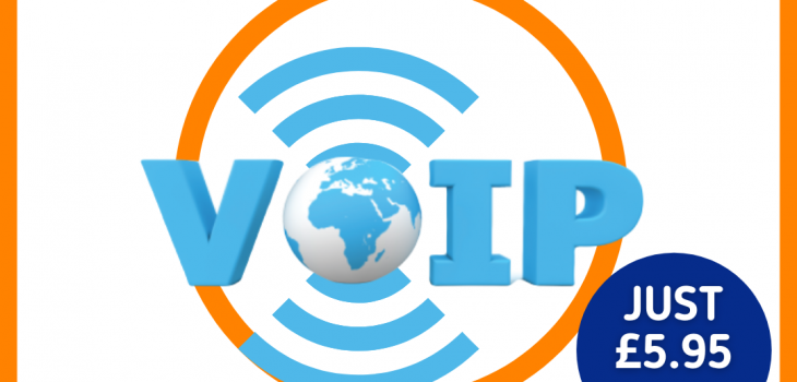 VoIP Single-User Phone System